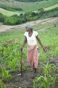 Blog - Fundación Khanimambo - Gloria en la machamba