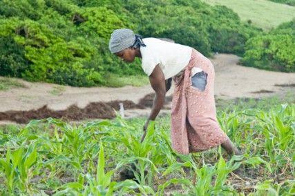 Blog de la Fundación Khanimambo - Brechas por cerrar
