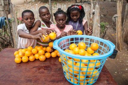 Blog de la Fundación Khanimambo - Nos gustan las naranjas
