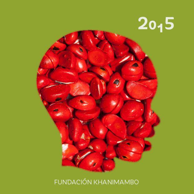 Portada Memoria de Actividades 2015 - Fundación Khanimambo