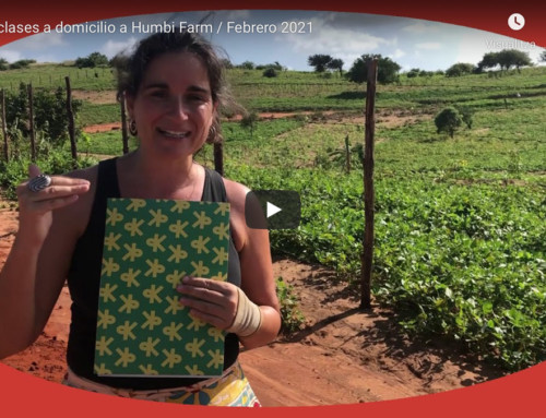 De las clases a domicilio a Humbi Farm / Febrero 2021